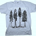 Kyle Rollins - Ancient Trees of the Northwest T-Shirt